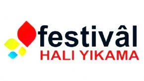 Festival Halı Yıkama
