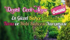 Denizli'de En Güzel Bahçe, Balkon, Teras ve Hobi Bahçesi Yarışması